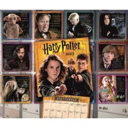 Falinaptár Harry Potter 2022 Cardex 305x610mm
