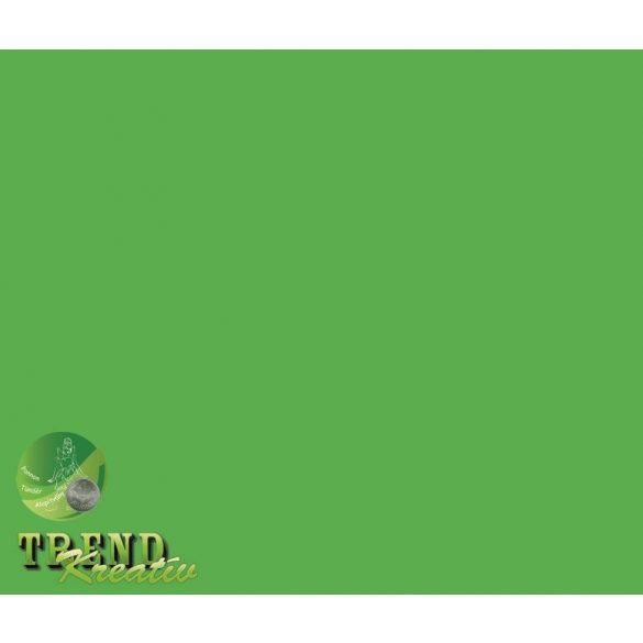 Dekorkarton kétoldalú zöld intenzív KreatívTREND 640x450mm 240g
