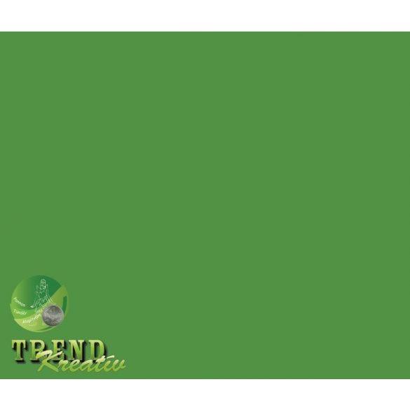 Dekorkarton kétoldalú sötétzöld intenzív KreatívTREND 640x450mm 240g