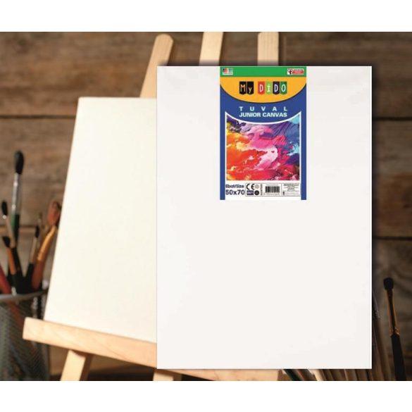 Festővászon fakeretes MyDido 500x700mm
