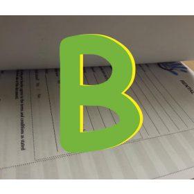 """""""B"""" jelű nyomtatvány"""