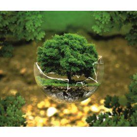 Környezetvédelmi tábla